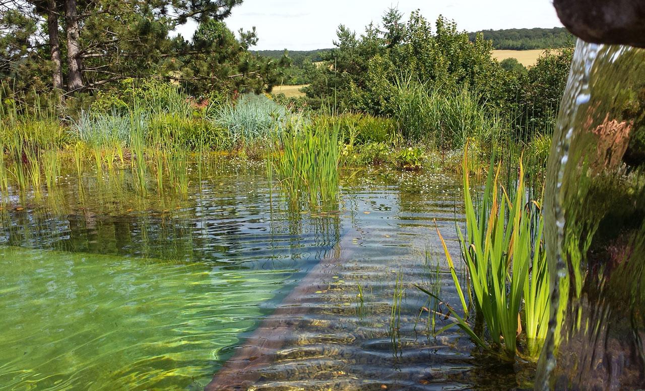 Votre paysagiste dijon bourgogne cr ation paysage 21000 for Petite piscine naturelle