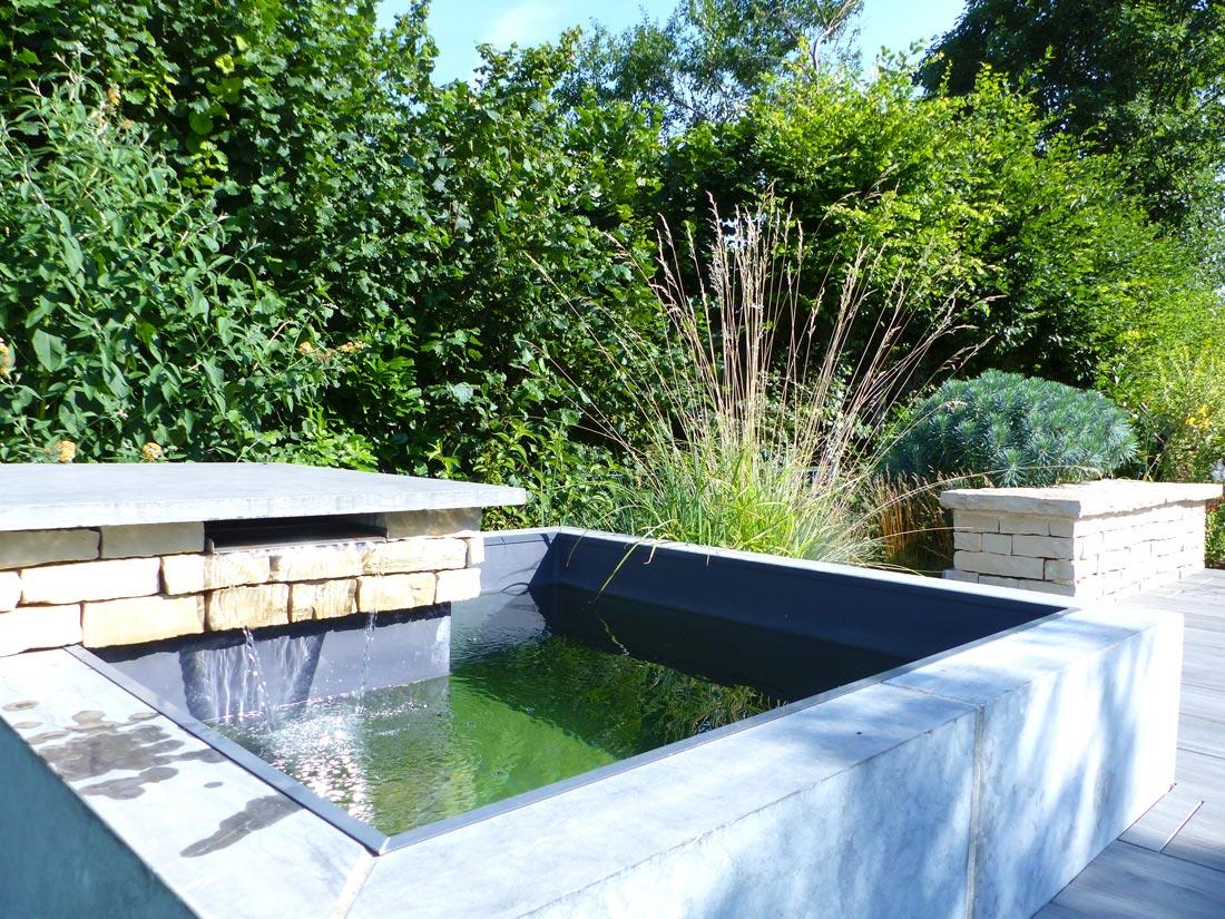 Jardins aquatique 02 for Creation bassin de jardin