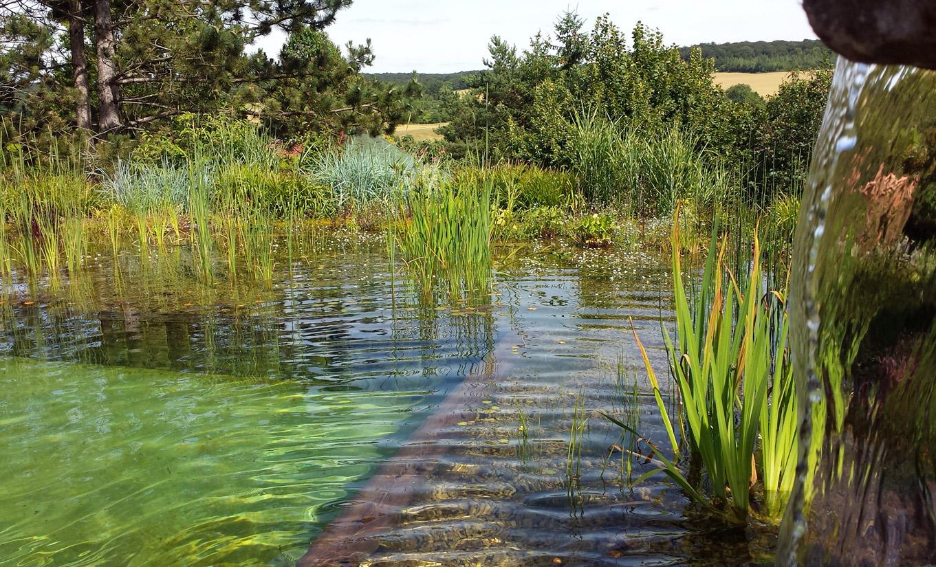 bassin d 39 eau et piscine pour le baignade naturelle et cologique. Black Bedroom Furniture Sets. Home Design Ideas