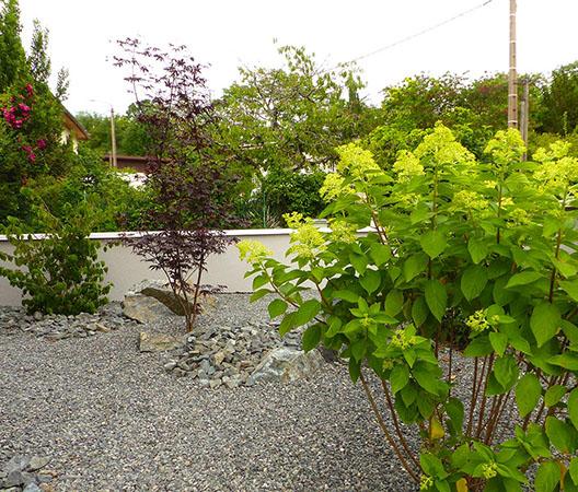 Jardin à Dijon 25