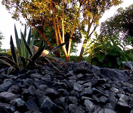 Jardin aménagement en Côte-d'Or 27