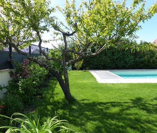 Création d'une piscine et aménagement des abords à Dijon  14
