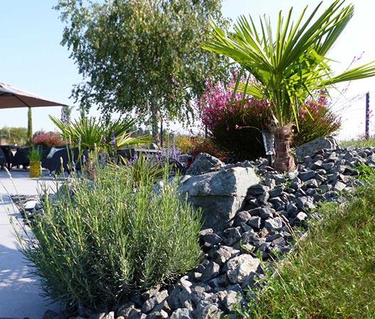 jardin et piscine contemporaine 9