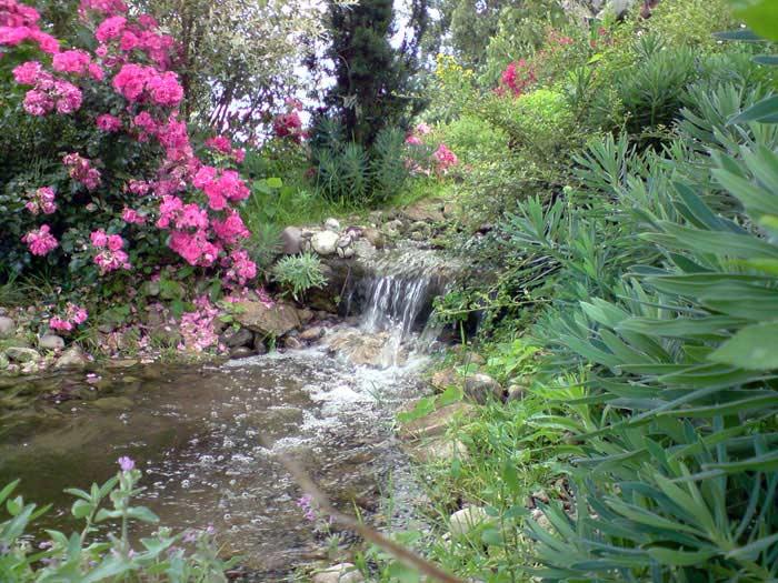 Cr ation des bassins et plan d 39 eau cascades d 39 eau et for Cascade d eau jardin