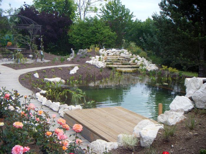 Cr ation des bassins et plan d 39 eau cascades d 39 eau et for Creation bassin jardin